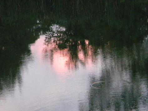 Monet Pond