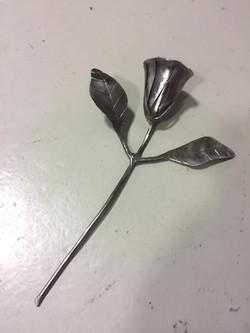 Rose für euch ALLE.