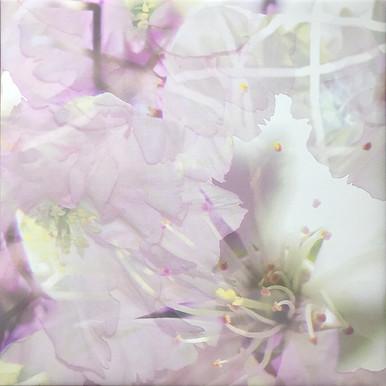 haenni-irene_ot_2021_pigmentdruckaufcanvas_55x55cm_k1_IMG_6519.jpg