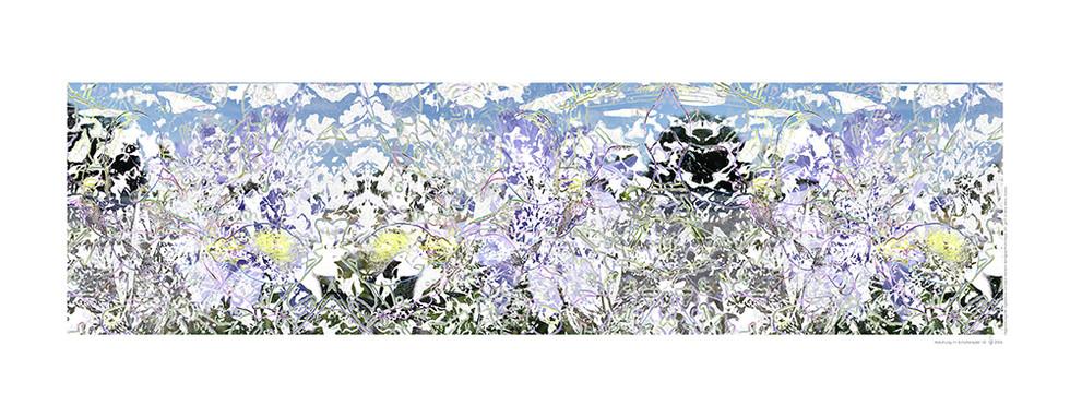 haenni-irene_abkuehlung_2006_ca.48x123cm