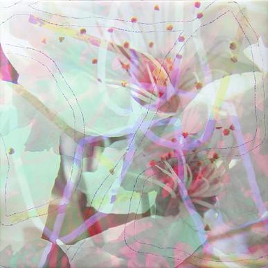 haenni-irene_ot_2021_pigmentdruckaufcanvas_55x55cm_g2_IMG_6542.jpg
