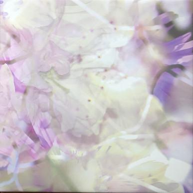 haenni-irene_ot_2021_pigmentdruckaufcanvas_55x55cm_k3_IMG_6522.jpg