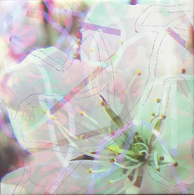 haenni-irene_ot_2021_pigmentdruckaufcanvas_55x55cm_g1_IMG_6541.jpg