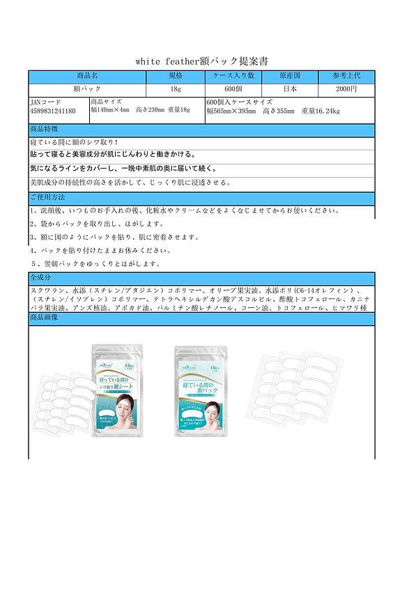 額パック商品案内書-1.jpg