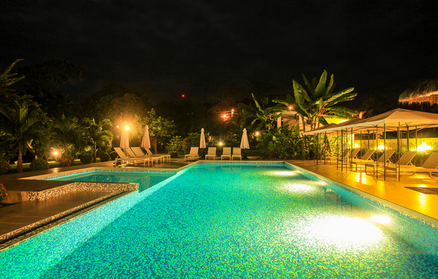 Nighttime Swim