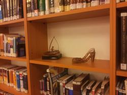 Shelves at IDC with Arik Afek 2
