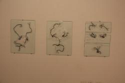 Three by  Arik Afek