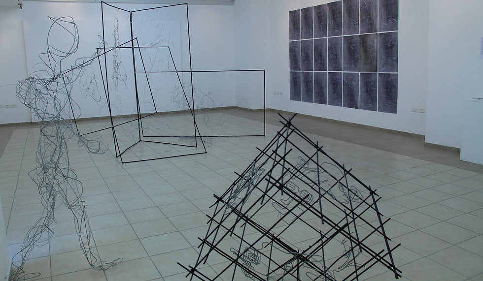 To Float between the Wires - exhibition by Arik Afek, Hadera Artist's Gallery, April 2013