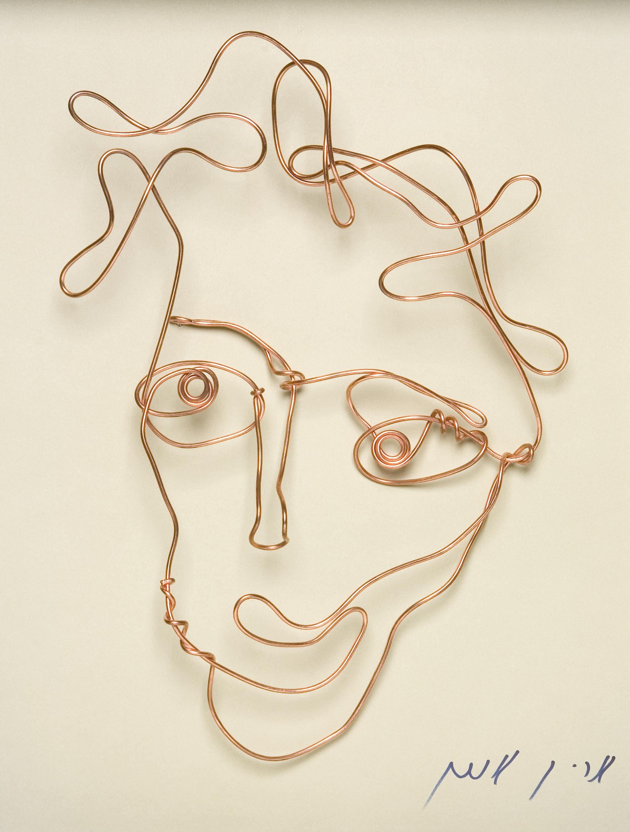 Smiling Wire by Arik Afek