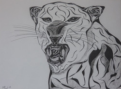 Tiger by Arik AFek
