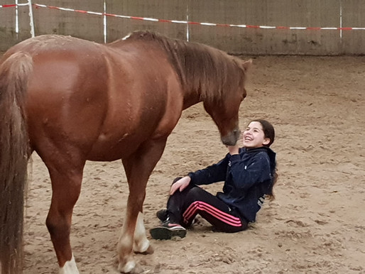 Paarden en autisme: A match made in heaven!