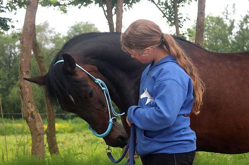 Van-Esch-paardencoaching-volwassenen-kin