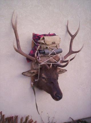 Elk20.jpg