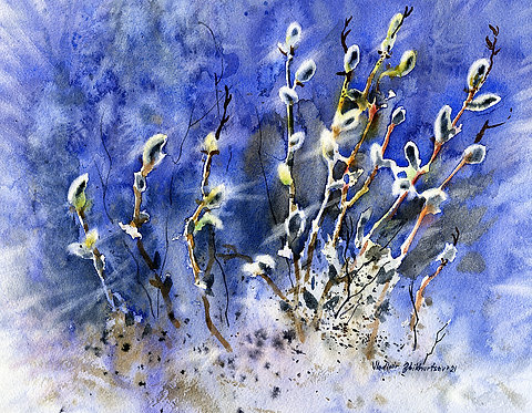 SPRING WILLOW, ALASKA original watercolor(unframed)