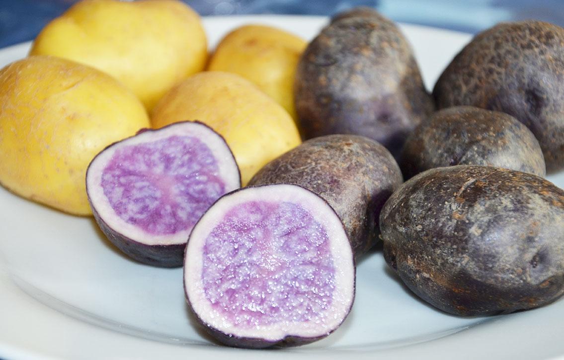 Violette Erdäpfel