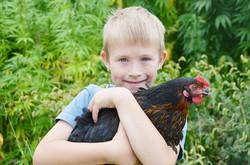 Lukas mit einem unserer Hühner