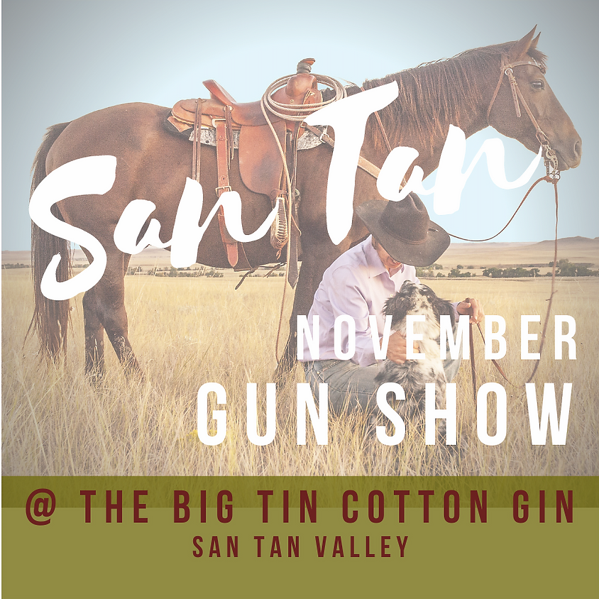 November San Tan Gun Show