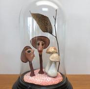 Fungi friends