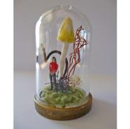 Miniature Dome 1