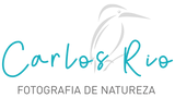 Logotipo transparente.png