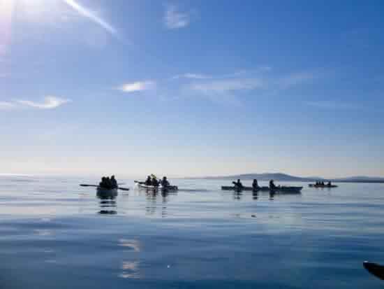 Island Scenic OA (12)