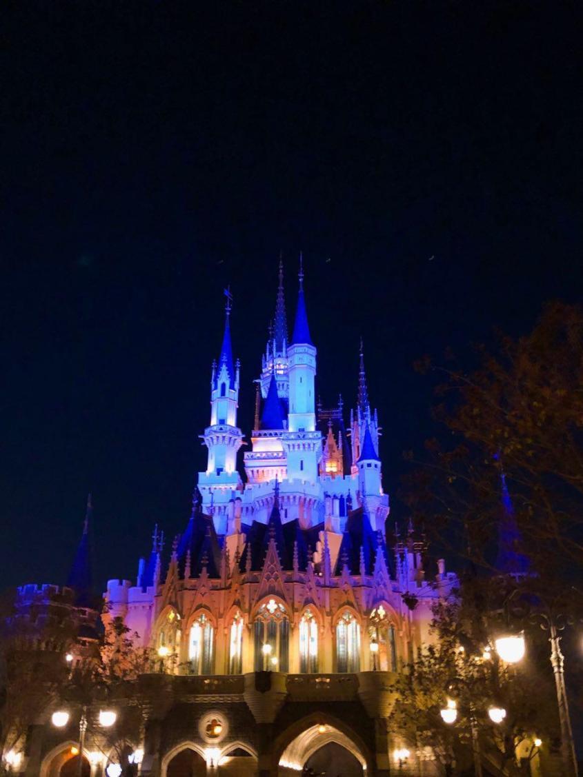 Disneyland Castle On the Night