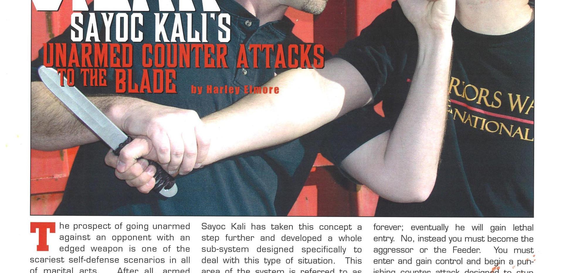 MartialArtsExpert_Spring2008_PG-38.jpg