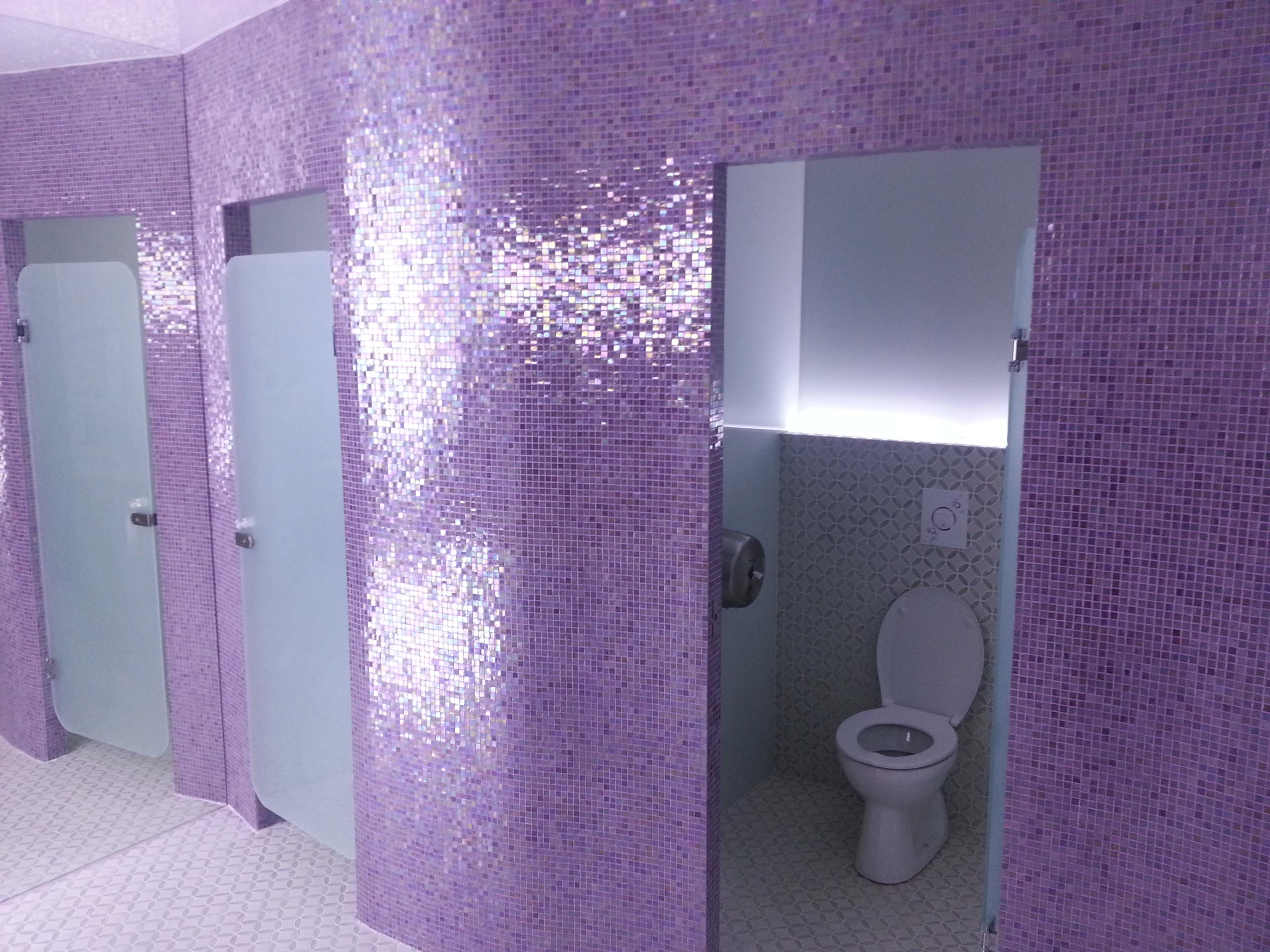 Usi din sticla WC