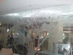 Perete decorativ cu geam duplex