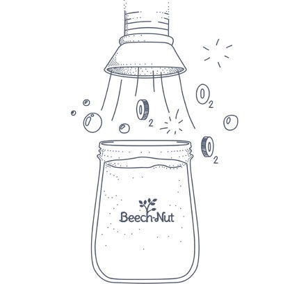 beechnut-illustration.jpg