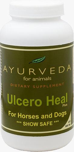 Ulcero Heal