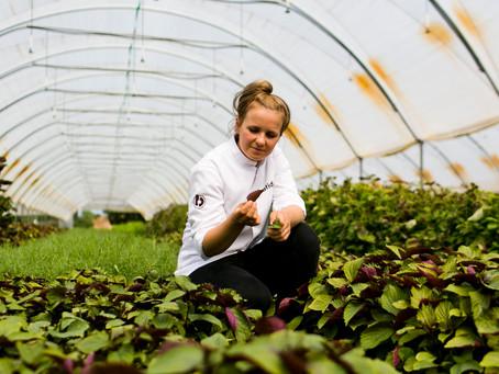 Adrianna Jund - Ambasador kuchni roślinnej dla Batida