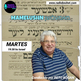 MAMELUSHN