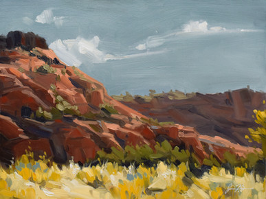 Snow Canyon State Park #2