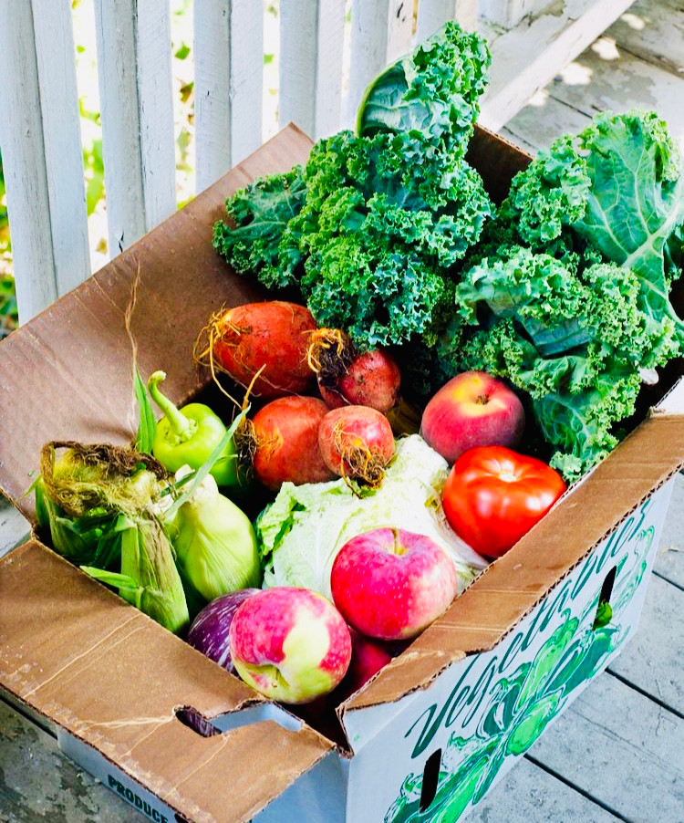 Big box of veggies from a CSA, Community Supported Agriculture