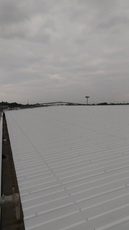 大泉町立東小学校体育館屋根塗装塗り替え塗装工事_201102_10.jpg