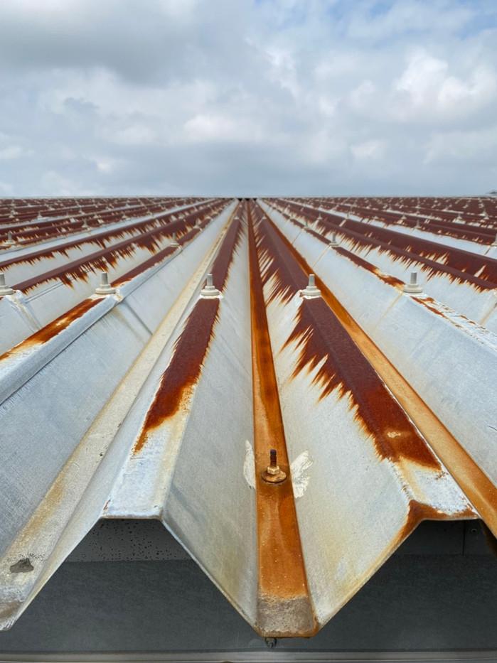 大泉町立東小学校体育館屋根塗装塗り替え塗装工事_201102_3.jpg