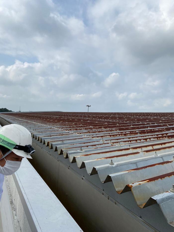 大泉町立東小学校体育館屋根塗装塗り替え塗装工事_201102_2.jpg