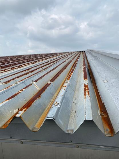 大泉町立東小学校体育館屋根塗装塗り替え塗装工事_201102_0.jpg