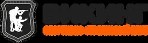 Logo_Viking2.png