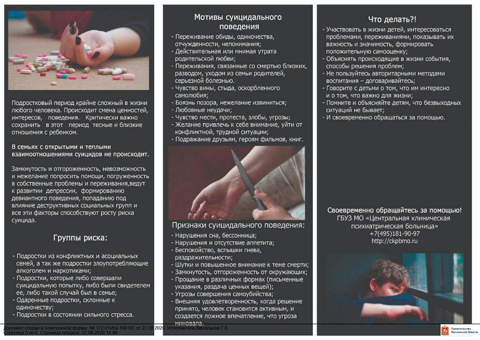 __Толмачёв_Д.С._Шуянова_Л.М._page-0005.j