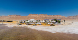 Dead Sea Oasis