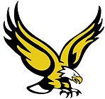golden eagle.jpeg