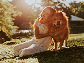 Dogs can buffer stress experienced by young children