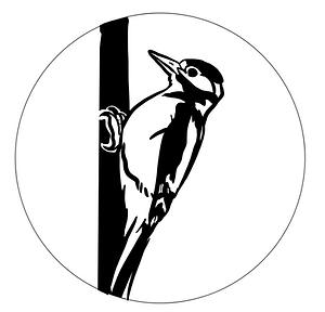 Badge Specht Rhythmik Badge