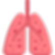 lungs.png