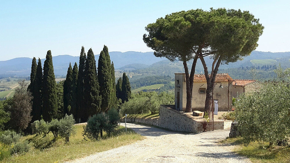 More Tuscan scenery