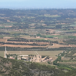 Catalan walk
