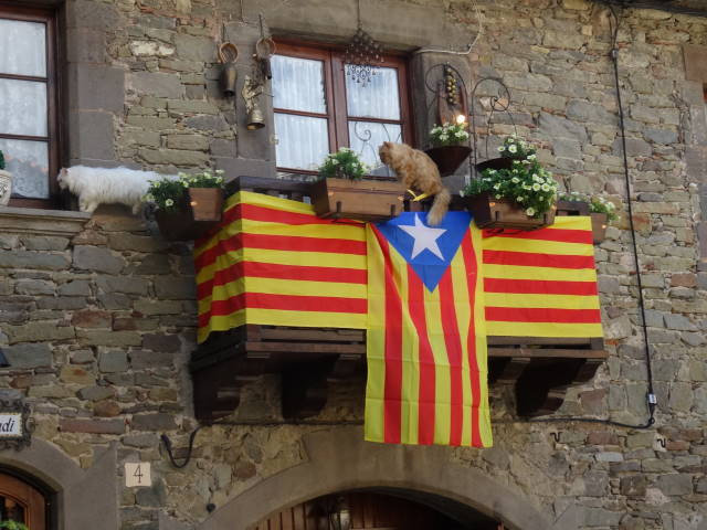 Cats and Catalonia flags