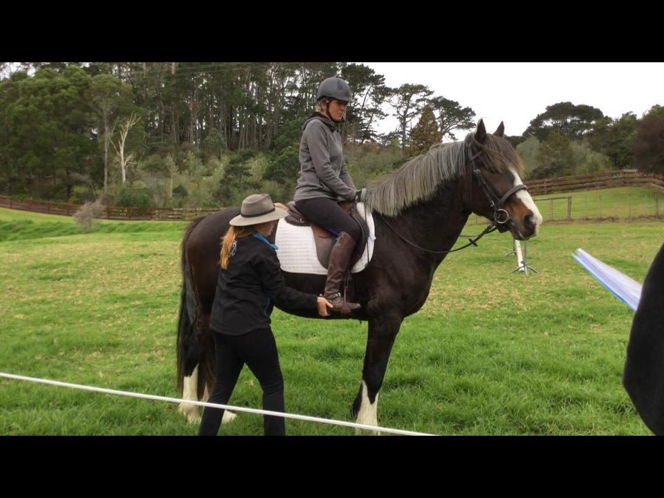 Horse & Rider Combo Treatment